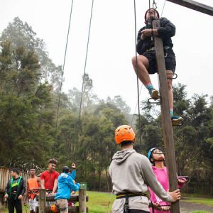 High Ropes3